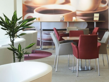 Как да изберете подходящи мебели за кафе?